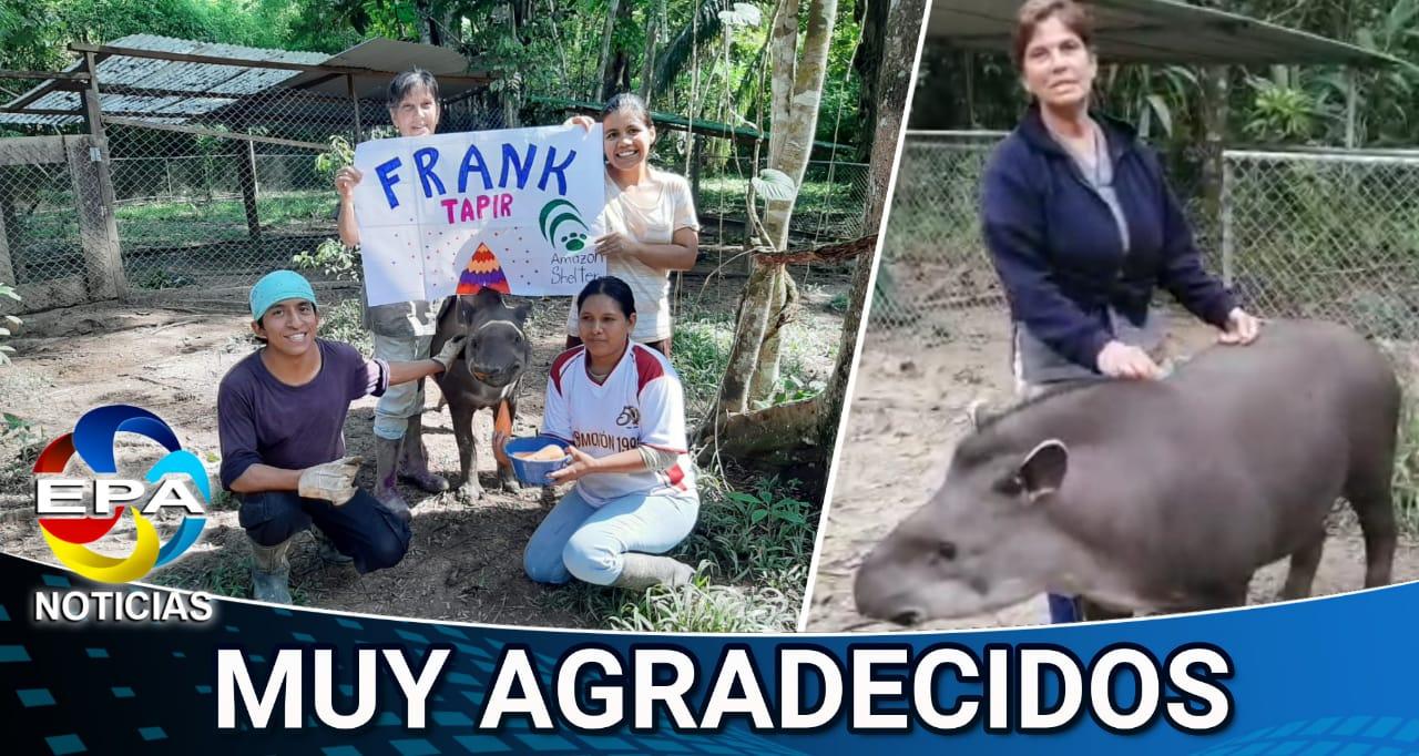 Madre de Dios. Ya podrán comprar alimentos para animales.